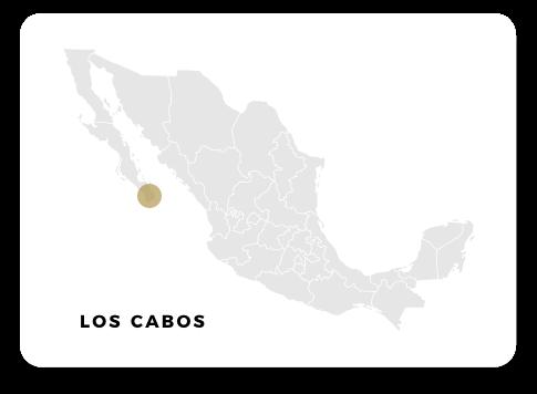 Los Cabos-ECM de Vinos-1@2x
